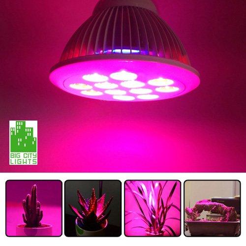 24w Led Grow Light Bulb Big City Lights