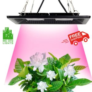 LED Grow plant light lite canada