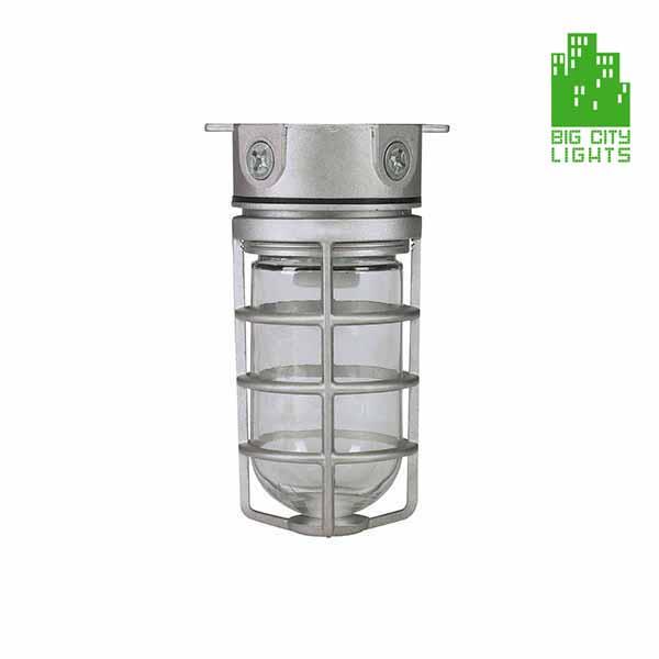 RAB design cage light dvaks100cg Toronto Scarborough Canada
